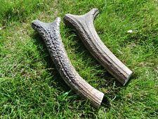 2 antler dog chews, large, 19-21cm long, 325 grams weight