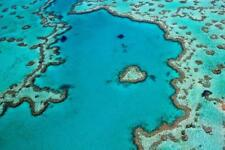 PHOTOGRAPHIC PRINT ON QUALITY ACRYLIC - Heart Reef, Great Barrier Reef Australia
