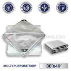 Silver Heavy Duty 10 mil Tarp Reinforced Resistant Cover Boat Shelter Canopy