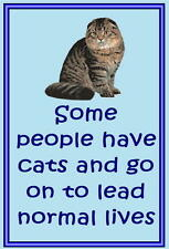 Scottish Fold Cat - Funny cat sayings - Acrylic cat fridge magnets