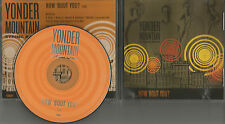 YONDER MOUNTAIN STRING BAND How bout You 2006 USA PROMO Radio DJ CD single