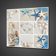 COLLAGE OF SEA SHELLS BLUE WHITE BATHROOM CANVAS PRINT WALL ART PICTURE PHOTO