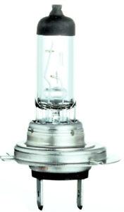 Headlight Bulb-Nighthawk Twin Blister Pack GE Lighting H7-55NH/BP2