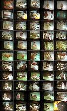 16 mm Film 1980.Jahre-Genetische Verarmung-Braunschweig Gendatenb.Antique Movie