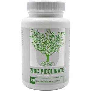 Universal Nutrition Zinc Picolinate Dietary Supplement - 120 Capsules