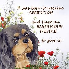 CAVALIER KING CHARLES SPANIEL DOG black tan new glossy plaque Sandra Coen artist