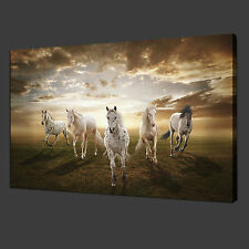 """Unframe 12x20"""" Canvas Prints Wall Art Pictures Home Decor Animal Horse Sunset"""