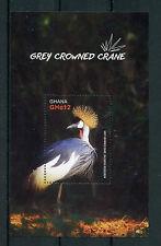 Ghana 2016 MNH Grey Crowned Crane 1v S/S Cranes Birds Stamps