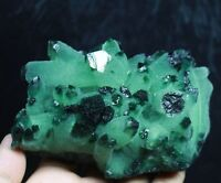 690g RARE ! New Find Natural Beatiful Green Quartz Crystal Cluster Specimen