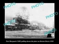 OLD LARGE HISTORICAL PHOTO OF PORT MACQUARIE NSW, VIEW OF HORTON STREET c1920