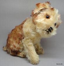 Steiff Molly Puppy Dog Tipped Mohair Plush 22cm 9in 1949 -54 Glass Eyes noID Vtg