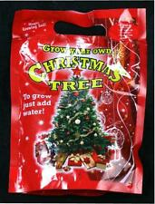 Grow Your Own Christmas Tree Live Xmas Tree For This Year & Next