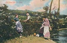 POSTCARD  SOCIAL HISTORY  He never told his love