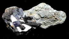 Benitoite w/Neptunite-Gem Mine,San Benito Co,California