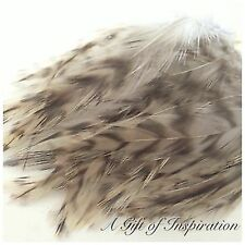 Strung Badger Saddle Grizzly Rooster Feathers 8-12cm Long Price per 10cm Craft