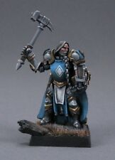 Halbarand Cleric Reaper Miniatures Dark Heaven Legends Paladin Fighter Melee