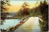 Green Lake Bridge and Mettowee Bay Canada Lake NY Postcards Posted 1909
