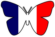24 X EDIBLE BUTTERFLY CUP CAKE TOPPERS - FRANCE FRENCH FLAG OLYMPICS