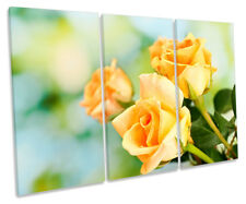 Large single Summer Yellow Rose Flower Floral Art Ready to Hang Canvas X1542