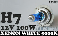 1 x H7 12V 100W Xenon White 5000k Halogen Blue Car Head Light Lamp Globes Bulbs