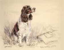 ENGLISH SPRINGER SPANIEL DOG LIMITED EDITION PRINT Signed Artist's Proof # 11/85