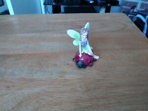 Fairy Sat On A Ladybird New