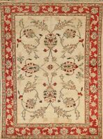 Floral Peshawar Oriental Area Rug Traditional Hand-knotted Wool Carpet 4x5 Foyer