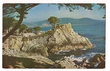 MIDWAY POINT CARMEL BAY Cypress Pacific Grove Monterey CALIFORNIA Postcard 1956