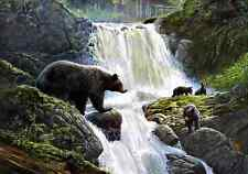 """16""""x24""""Waterfall Bear HD Canvas Prints Home Decor Painting Wall Art Picture"""