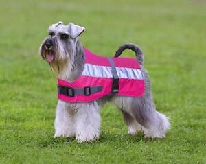 Petlife Flecta Hi-vis Dog Jacket / Coat Pink - keep dog safe & warm in the dark