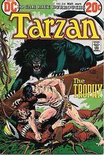 Tarzan Comic Book #218, DC Comics 1973 VERY FINE-