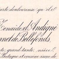 Françoise Olympe D'Andigne Pissonnet De Bellefonds Angers 1886