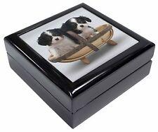 King Charles Spaniel Puppy Dogs Keepsake/Jewellery Box Christmas Gift, AD-SKC4JB