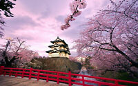 157507 Osaka Castle Japan Decor Wall Print Poster CA