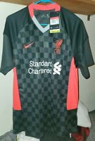 Nike Liverpool FC 2020/21 Stadium 3rd Men's  LARGE Soccer Jersey CZ3197-060