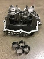 CANAM CAN AM BRP DS450 DS 450 XMX XXC X PORTED ENGINE CYLINDER HEAD VALVES 08+