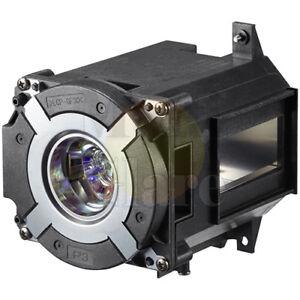 Original bulb inside Projector Lamp Module for NEC NP42LP / 100014502