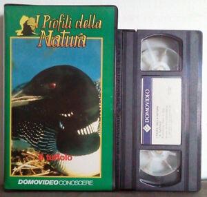 VHS Ita Documentario I PROFILI DELLA NATURA Il Tuffolo ex nolo no dvd cd lp(V129