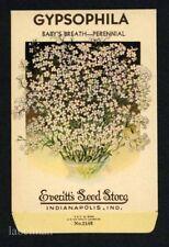 GYPSOPHILA, Baby's Breath, Everitt's Antique Seed Packet, Home Decor, 147