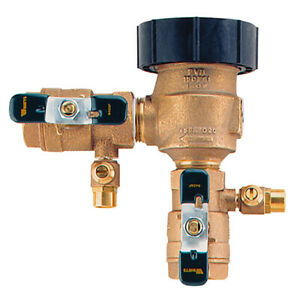 "Watts 800M4QT Sprinkler Vacuum Breaker - 3/4"", 150 PSI, Temp. Range 33ºF - 140ºF"