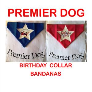 Birthday Boy & Girl   Bandana - slip onto your dogs collar - 2 sizes available