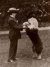 OLD ENGLISH SHEEPDOG EDWARDIAN IMAGE GENTLEMAN AND DOG ON GREETINGS NOTE CARD