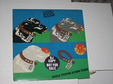 33 rpm STRAY DOG while your down there MA6-501S1 nice SEE PICS