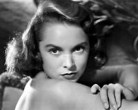 ACTRESS JANET LEIGH - 8X10 PUBLICITY PHOTO (FB-319)