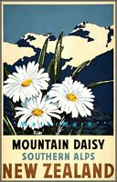 New Zealand 1930 Mountain Daisy Southern Alps Vintage Poster Print Retro Travel