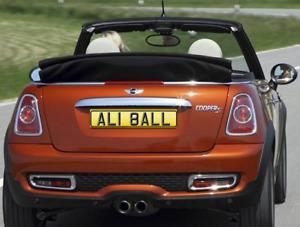 ALISON BALL ALISTAIR BALL