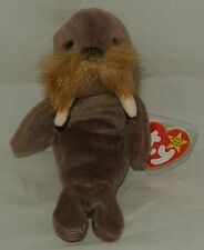 Ty Beanie Baby JOLLY the Walrus RETIRED - USA SELLER NWT's