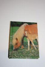 Pocket money toys party bag filler kids mini Horse design hard back address book