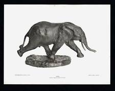PHOTOGRAVURE CARL E. AKELEY ELEPHANT GOING TAXIDERMY SCULPTURE