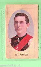1910 AUSTRALIAN FOOTBALLERS CIGARETTE  CARD - M.  SHEA, ESSENDON